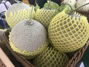 圖/9月初的正值台南洋香瓜產季